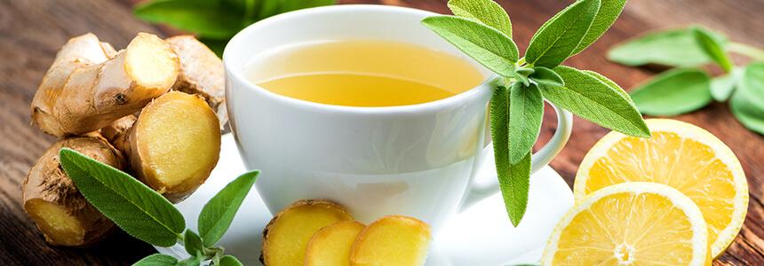 Ingwer, Zitrone und Minze als Hausmittel gegen Erkältung